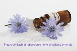 Fleurs de bach et réflexologie - complément indispensable à la réflexologie - les émotions et la réflexologie -